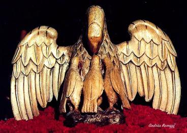 Amor-Pelicano